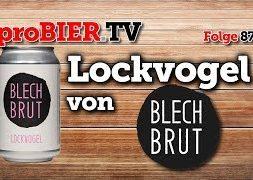 Lockvogel von Blech Brut | proBIER.TV – Craft Beer Review #874 [4K]
