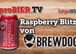 Raspberry Blitz AF von Brewdog | proBIER.TV – Craft Beer Review #1030 [4K]