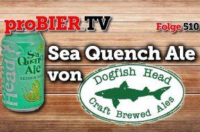3 Bierstile – 1 Dose – Sea Quench Ale von Dogfishhead