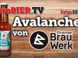 Avalanche von Brauwerk | proBIER.TV – Craft Beer Review #1010 [4K]