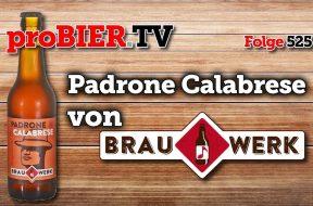 Bergamotte Ale von Brauwerk – Padrone Calabrese