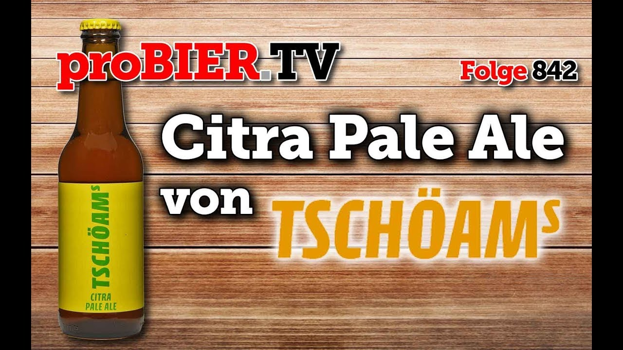 Citra Pale Ale von Tschöams | proBIER.TV – Craft Beer Review #842 [4K]