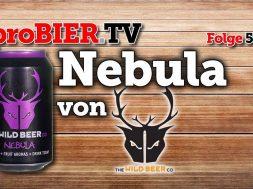 Hazy IPA, das ist das Nebula von Wild Beer Co.