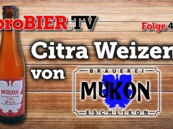 Mükon – Mein erstes Schweizer Bier ist ein Citra Weizen