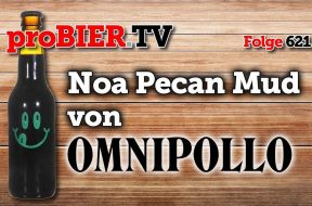 Noa Pecan Mud Stout von Omnipollo
