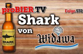Polnischer 98 IBU Hai – Shark von Widawa / Kopyra