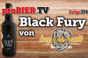Ruhig Brauner – Hier kommt Black Fury