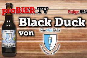 Schwarze Ente aus Wiener Neudorf