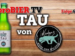 TAU von Kiesbyes Biere der Wildnis | proBIER.TV – Craft Beer Review #643 [4K]