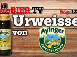 Urweisse von Ayinger | proBIER.TV – Craft Beer Review #1014 [4K]