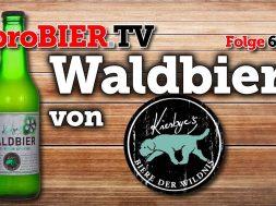 Waldbier 2017 von Kiesbye   proBIER.TV – Craft Beer Review #650 [4K]