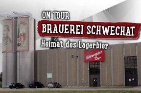 1263-ONTOUR-Schwechater-Web