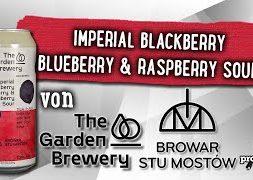 Imperial Sour von Garden Brewery x Stu Mostow   Craft Bier Verkostung #1736